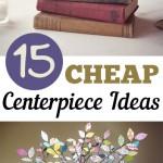 15 CHEAP Centerpiece Ideas