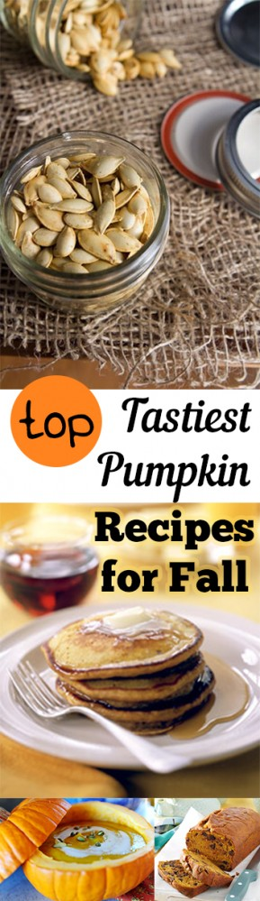 Yummy ways to eat pumpkin, how to eat pumpkin, Fall recipes, yummy recipes, Thanksgiving recipes, delicious eats, dessert recipes, popular pin, appetizer recipes, pumpkin recipes.