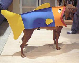 13 Hilarious Pet Costumes