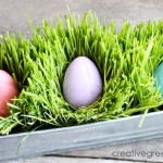 How to Grow Your Own Easter Grass