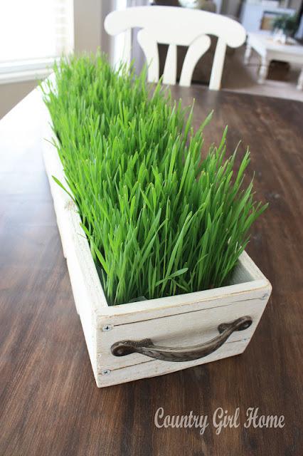 easter grass 9
