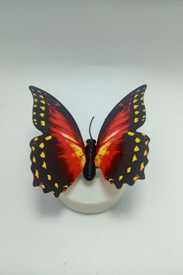 Plastic Jug Butterfly
