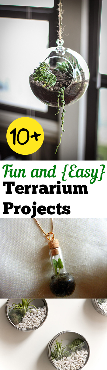 10+ Fun and {Easy} Terrarium Projects