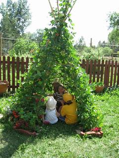 Backyard hacks, DIY backyard, backyard tips and tricks, gardening hacks, popular pins, landscaping tricks, outdoor living, DIY outdoor projects, DIY Backyard Hacks