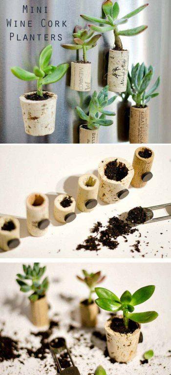 3-mini-wine-cork-planters-woohome-1