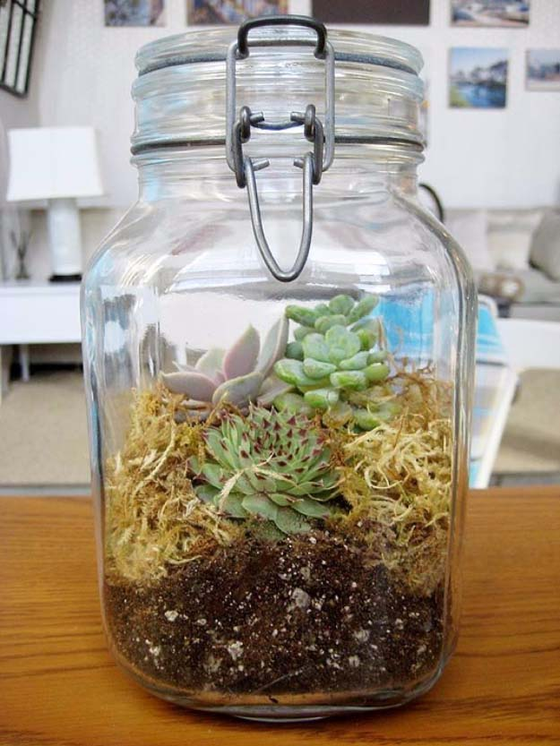 terrarium-in-jar-gift-for-green-thumbed-loved-ones