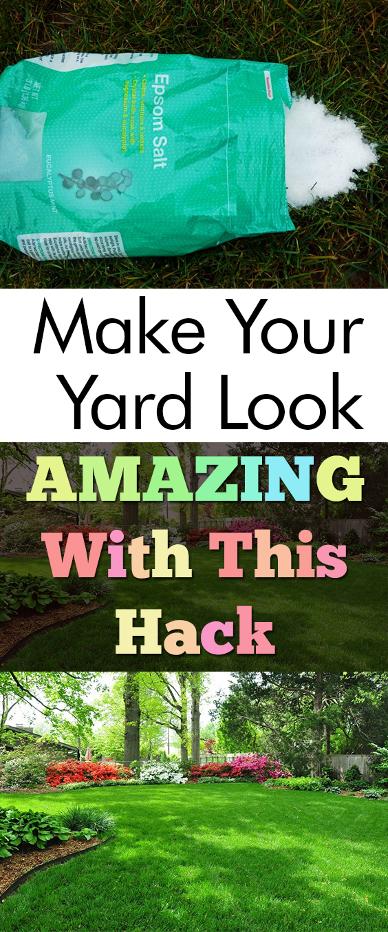Make Your Yard Look AMAZING With This Hack| Yard, Yard Hacks, DIY Yard, DIY Yard Stuff, Home Improvements, Landscaping, Landscaping Hacks, Landscaping DIYs, Popular Pin #Landscape #Yard