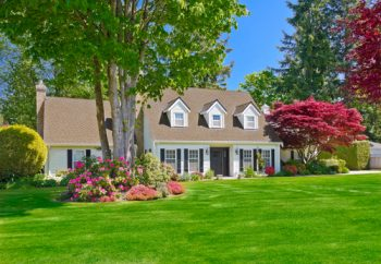 Here are some great curb appeal landscape ideas that are easy. No need to bust your back to make your home attractive to those driving by. My list of lists offers easy landscape ideas to be the house on the street with beautiful landscape.