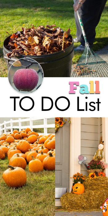Fall To Do List | Fall Chores List | Fall Chores Tips and Tricks | DIY Fall To Do List | Fall | Autumn | Fall Hacks | Fall Tips and Tricks | Home and Garden for Fall