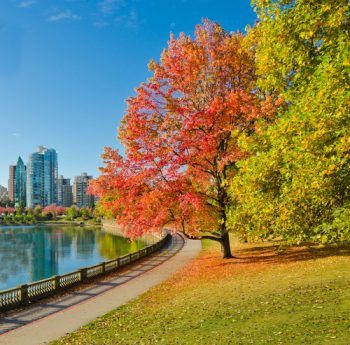 Fall | Places to Visit in the Fall | Fall Vacation Destinations | Fall Vacation Ideas | Fall Vacation | Fall Vacation Tips and Tricks