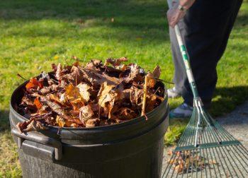 Fall To Do List   Fall Chores List   Fall Chores Tips and Tricks   DIY Fall To Do List   Fall   Autumn   Fall Hacks   Fall Tips and Tricks   Home and Garden for Fall