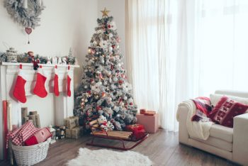 Perfect Christmas Tree | How to Pick the Perfect Christmas Tree | Christmas Tree | Picking a Christmas Tree | Tips and Tricks to Pick the Perfect Christmas Tree | How To Pick A Christmas Tree