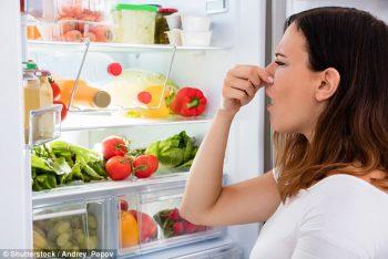 fridge | foods | food | food that expires | food that expires fast | fast expiring food | stinky fridge | food preservation