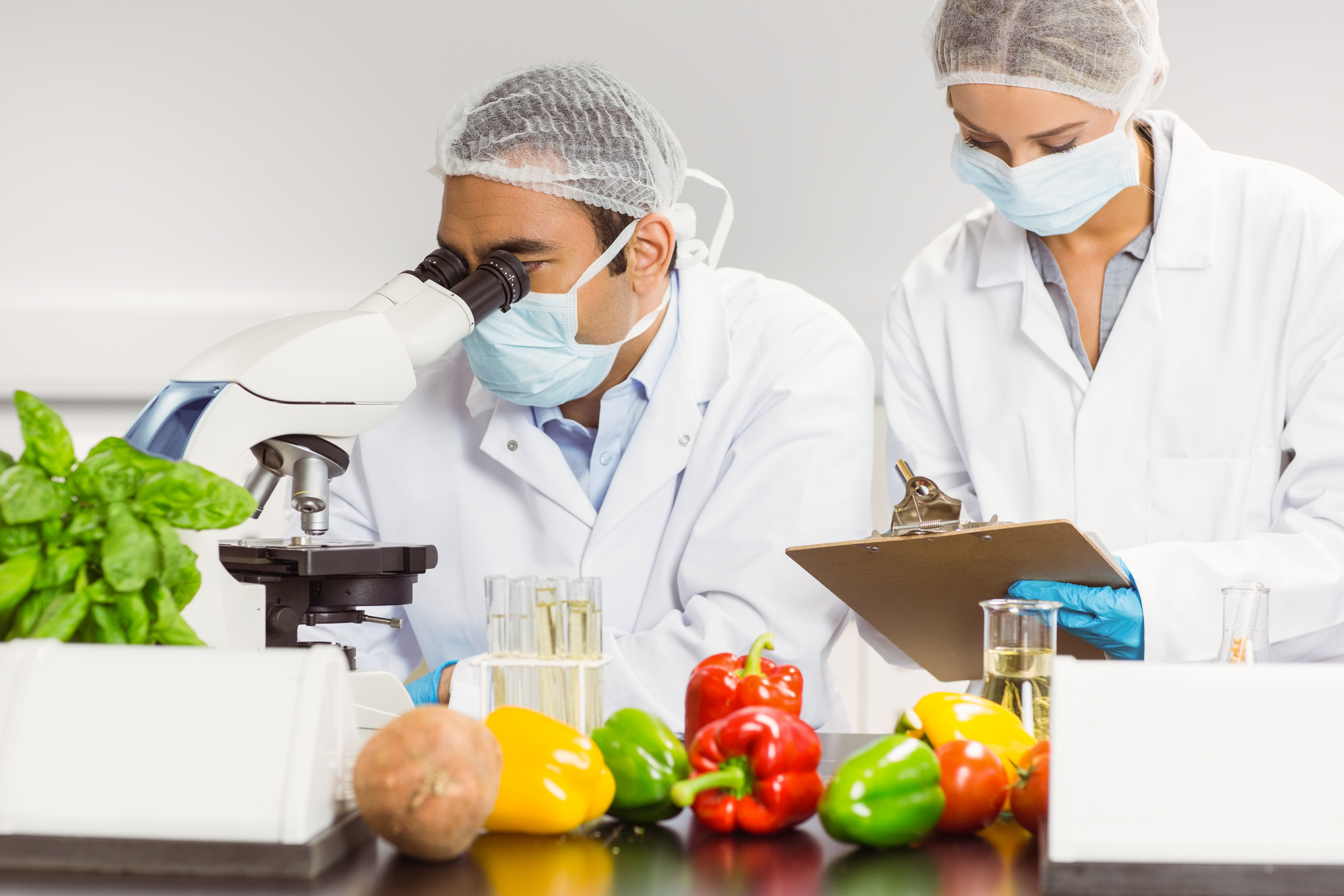 food safety | food | myths | food safety myths | safety | health | food health | debunking food safety myths