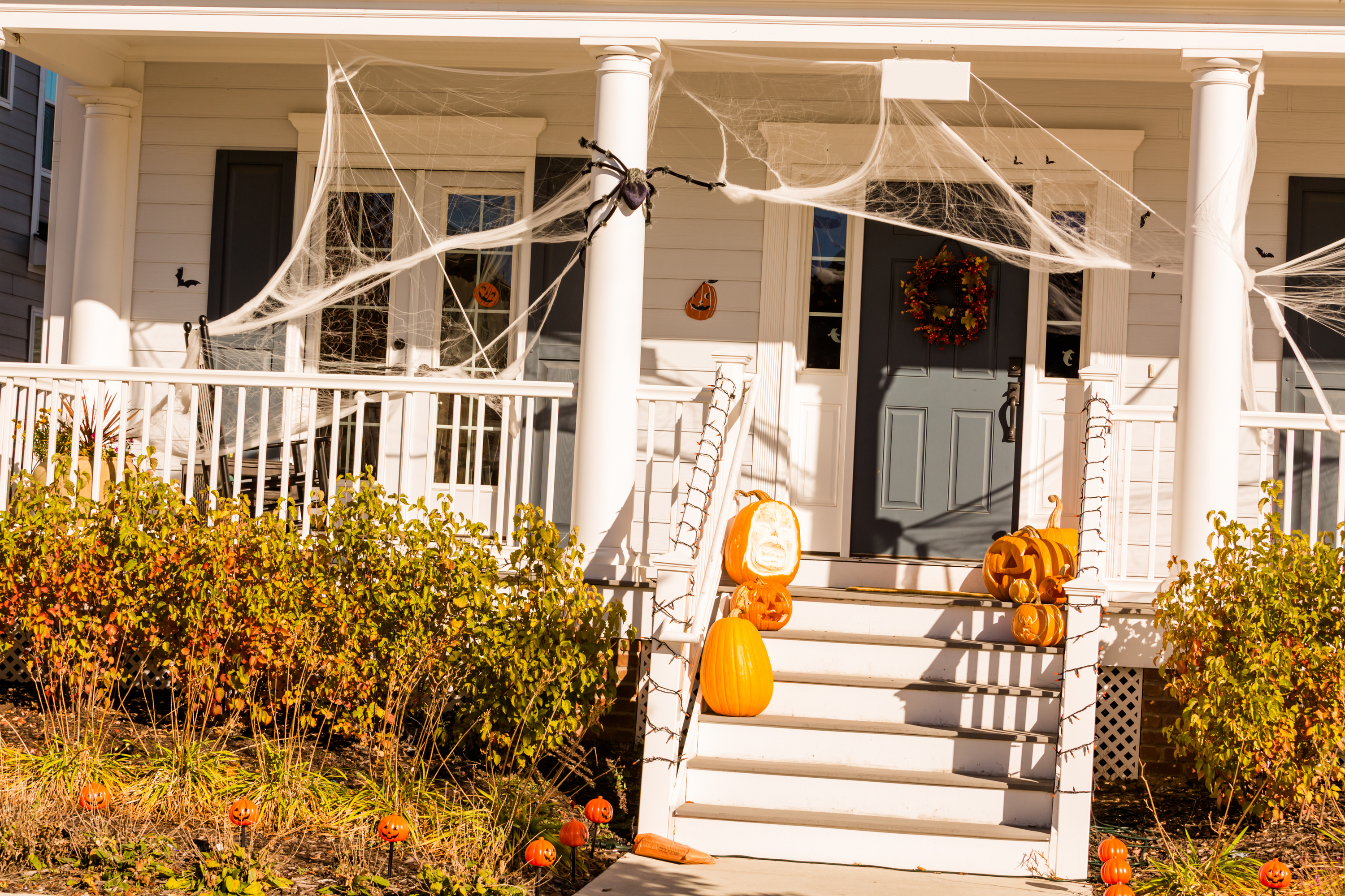 Pumpkins, spider webs, halloween decor