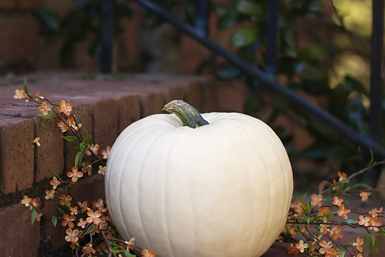 Pumpkin on a porchHalloween porch | Halloween porch decorating | porch | porch decor | Halloween | Halloween decor | fall