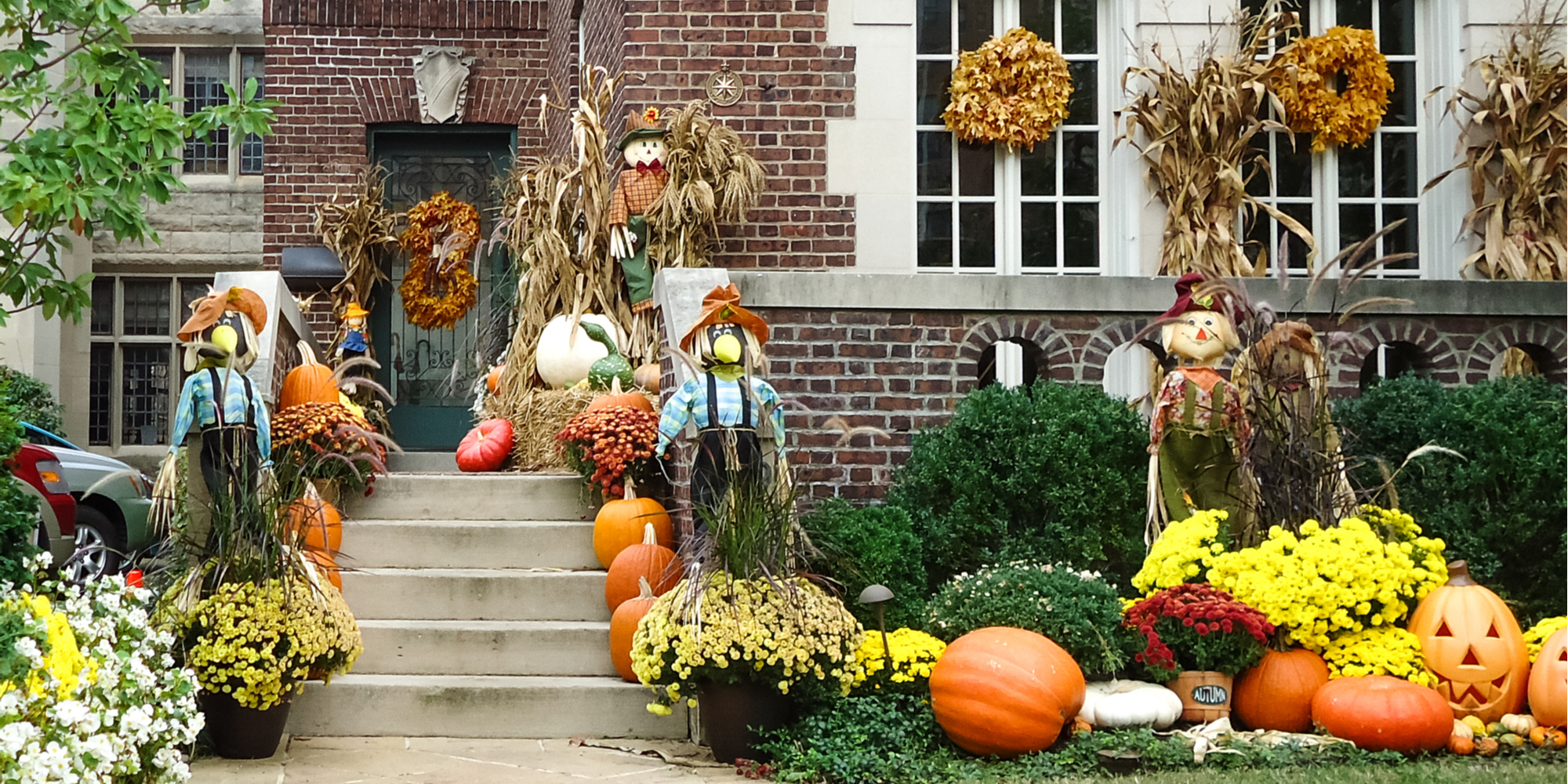 Fall/Halloween decor for your yard, house and porch.