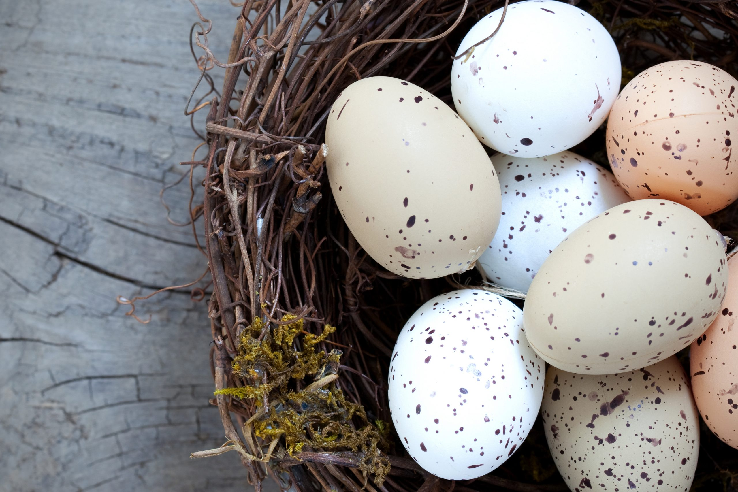 I'm throwing myself into making my own primitive spring crafts for my home. These are all pretty easy to make, you'll just need some of your usual craft supplies! Making your own eggs as a primitive spring craft is really easy and they will look darling!