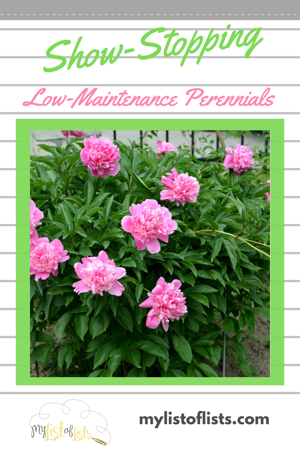 Low maintenance perennials are the way to go when landscaping. Like other perennials, they return each year filling your yard with color and texture but they require very little in care. If you like lush landscaping, but not so much the work involved in maintaining it, read this post for a list of perennials that will become your best friends. #landscapeideas #perennials #lowmaintenanceperennials
